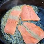 Six Salmon Recipes